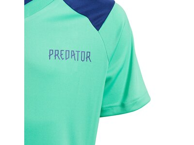 ADIDAS Kinder Trikot Predator Blau