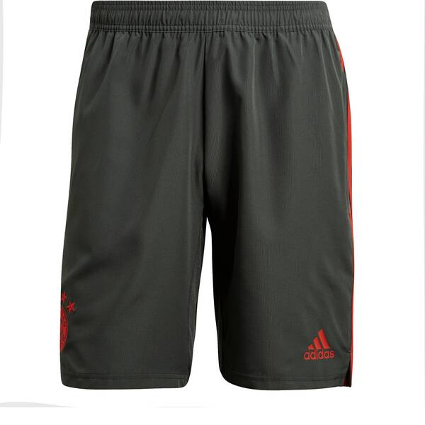 ADIDAS Herren FC Bayern München Downtime Shorts