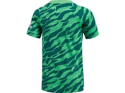 ADIDAS Kinder T-Shirt Cotton Tee Kinder Grün