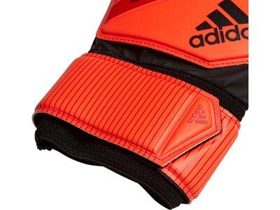 ADIDAS Equipment - Torwarthandschuhe Predator Top Training TW-Handschuh Orange