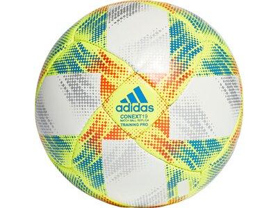 ADIDAS Herren Conext 19 Training Pro Ball pink