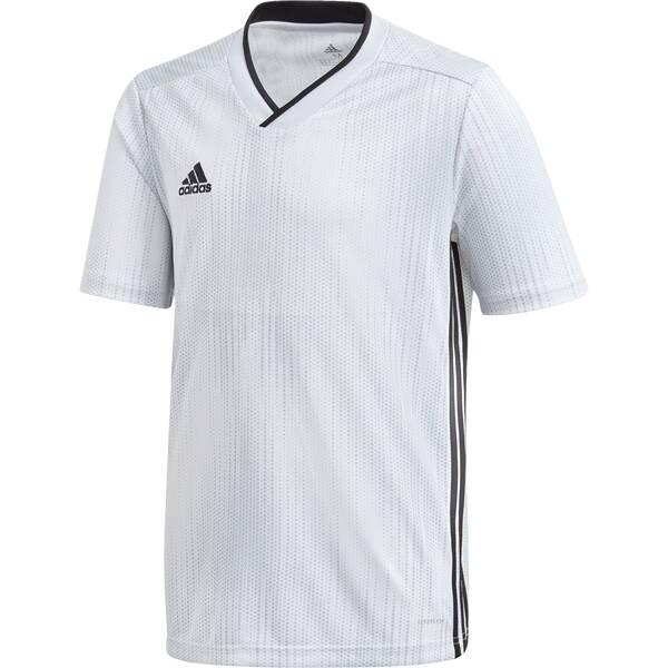 ADIDAS Fußball - Teamsport Textil - Trikots Tiro 19 Trikot kurzarm Kids