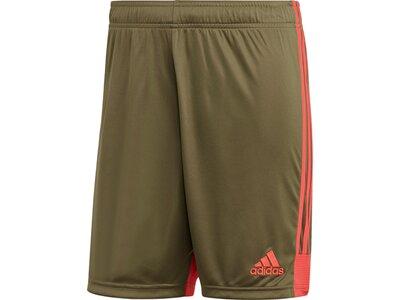 ADIDAS Herren Tastigo 19 Shorts Braun