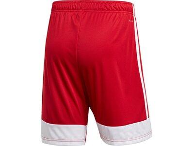 ADIDAS Herren Tastigo 19 Shorts Rot