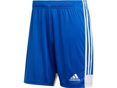 ADIDAS Herren Tastigo 19 Shorts Blau