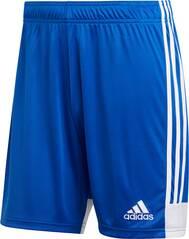 ADIDAS Herren Tastigo 19 Shorts