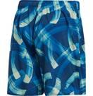 Vorschau: ADIDAS Herren Parley Allover Print Shorts
