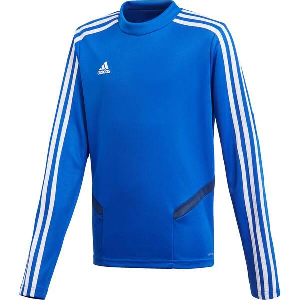 ADIDAS Kinder Sweatshirt TIRO19 TR TOPY