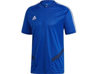 ADIDAS Herren Tiro 19 Trainingstrikot Blau