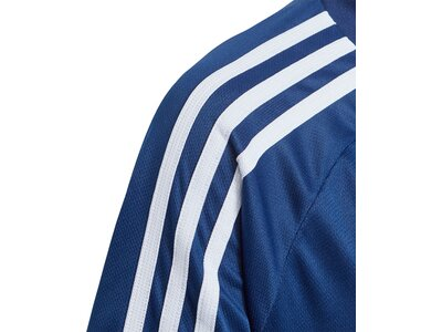 ADIDAS Kinder Tiro 19 Trainingstrikot Blau
