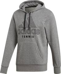 ADIDAS Herren Category Graphic Hoodie