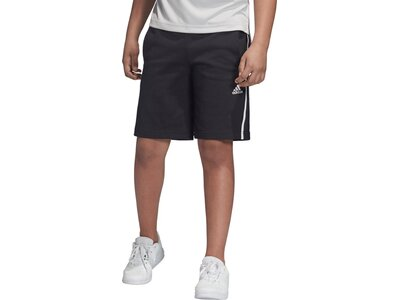 ADIDAS Kinder Predator Urban Shorts Pink