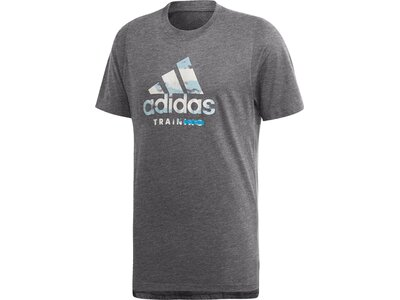 ADIDAS Herren T-Shirt FreeLift 360 Graphic Logo Grau