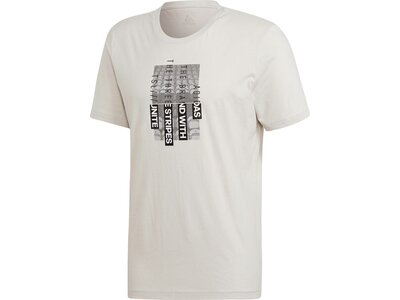 ADIDAS Herren T-Shirt Photo Grau