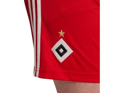 ADIDAS Herren Teamhose HSV H Rot