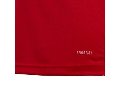 ADIDAS Kinder Team 19 Trikot Rot