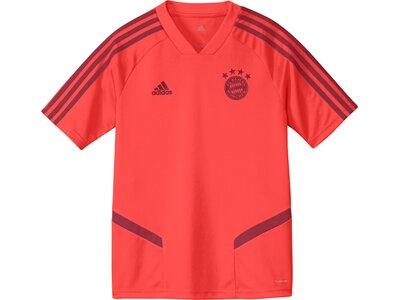 ADIDAS Kinder Trainingstrikot FC BAYERN MÜNCHEN Rot