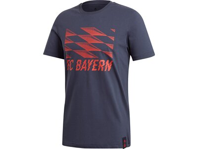 ADIDAS Herren T-Shirt FC BAYERN Street Graphic Grau
