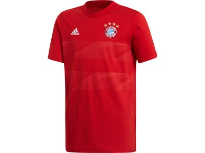 ADIDAS Kinder Shirt FC BAYERN Graphic Rot