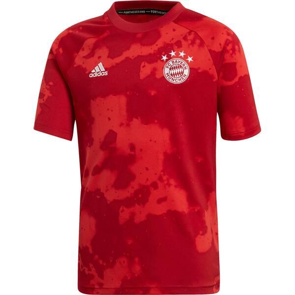ADIDAS Kinder Trikot FC BAYERN Pre-Match Youth