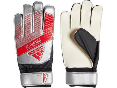 ADIDAS Herren Handschuhe PRED TRN Grau