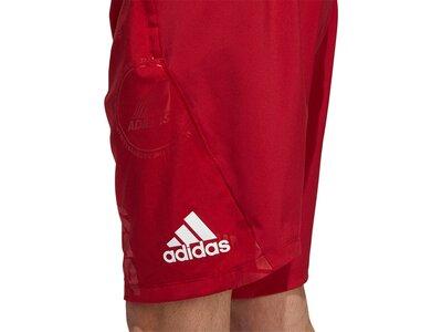 ADIDAS Herren Shorts DAILY PRESS Rot