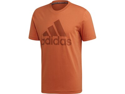 ADIDAS Herren T-Shirt Must Haves Badge of Sport Braun