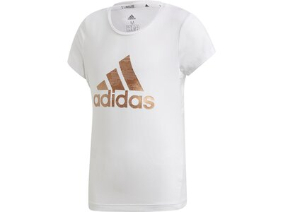 ADIDAS Kinder Shirt TR HLD Grau