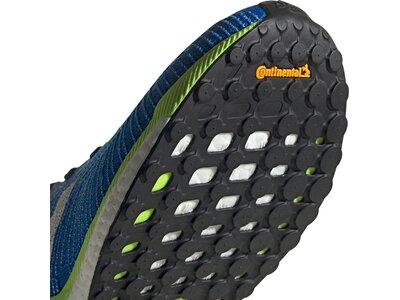 adidas Herren Solarboost 19 Schuh Grau