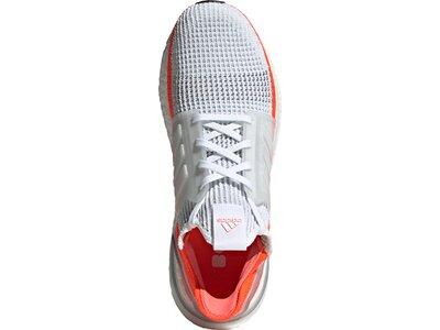 ADIDAS Herren Ultraboost 19 Schuh Grau