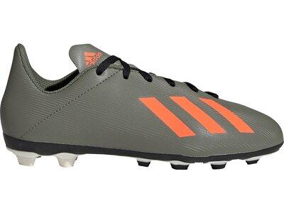 ADIDAS Kinder Fußball-Rasenschuhe X 19.4 FxG Grau