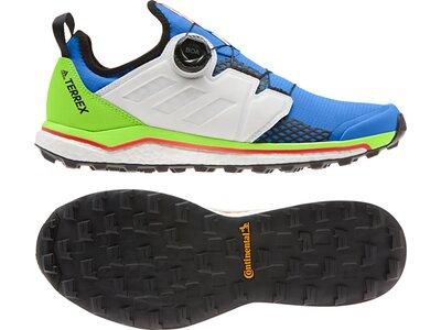 adidas Herren TERREX Agravic Boa Trailrunning-Schuh Blau
