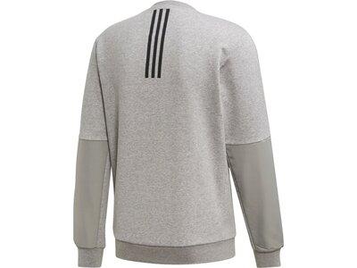 ADIDAS Herren Sweatshirt Motion CREW Grau
