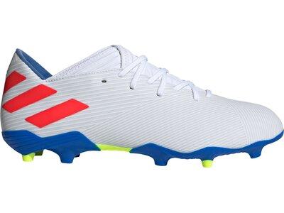 ADIDAS Fußball - Schuhe - Nocken NEMEZIZ Messi HYPE 19.3 FG Grau