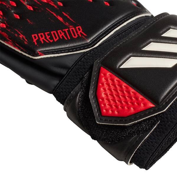 adidas Predator 20 Match Torwarthandschuhe