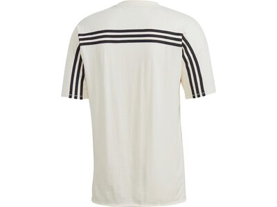 ADIDAS Herren Shirt MHE RC Grau