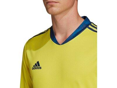 ADIDAS Fußball - Teamsport Textil - Torwarttrikots AdiPro 20 Torwarttrikot langarm Braun