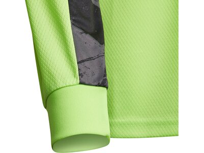 ADIDAS Fußball - Teamsport Textil - Torwarttrikots Adipro 20 TW-Trikot langarm Kids Grün