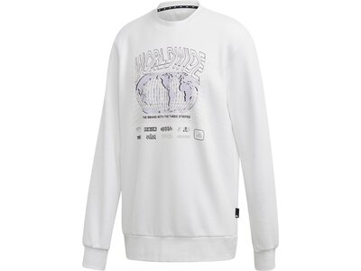 ADIDAS Lifestyle - Textilien - Sweatshirts PACK Crew Sweatshirt Grau