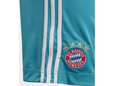 ADIDAS Kinder FC Bayern München Torwartshorts Blau