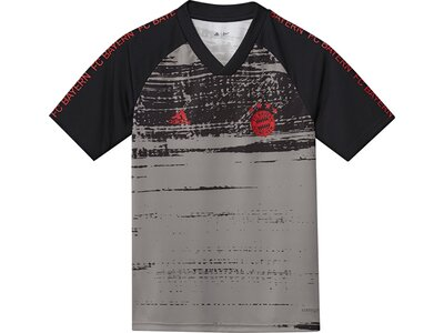 ADIDAS Replicas - T-Shirts - National FC Bayern München Prematch Shirt Kids Grau