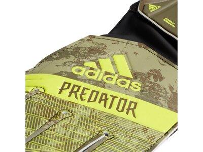 ADIDAS Kinder Predator Training Torwarthandschuhe Grün