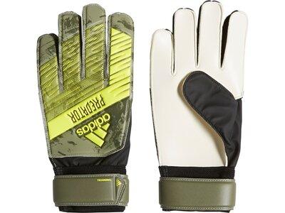 ADIDAS Herren Handschuhe PRED TRN Grün