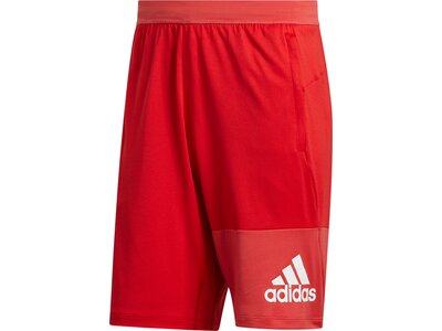 ADIDAS Herren Shorts 4K GEO Rot