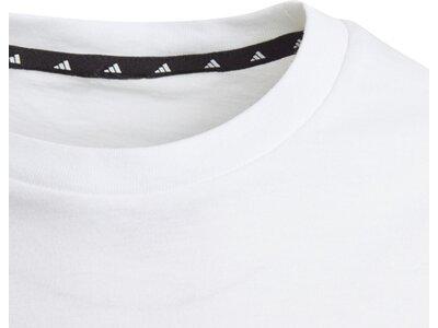 adidas Jungen adidas Athletics Pack T-Shirt Grau