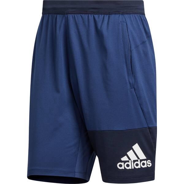 ADIDAS Herren Shorts 4K GEO