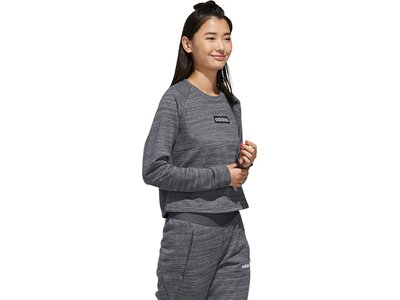 ADIDAS Damen Sweatshirt E SWEAT FT Grau