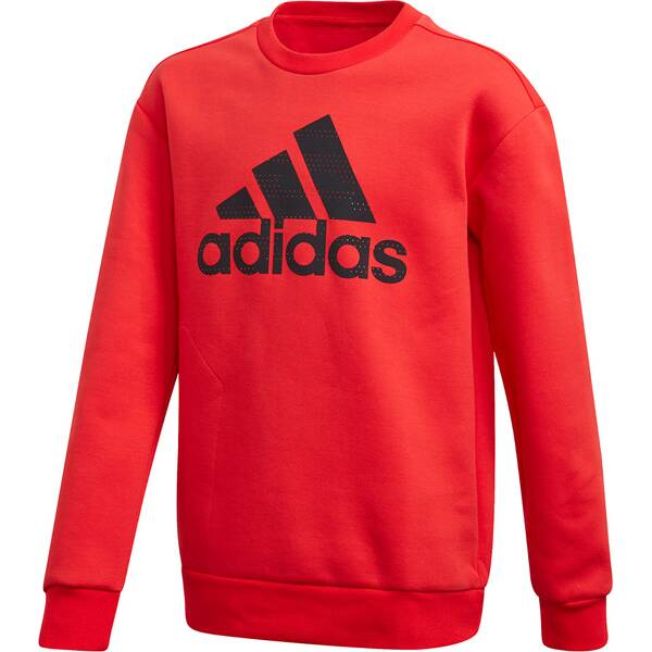 ADIDAS Kinder Sweatshirt JB A SPACER CW