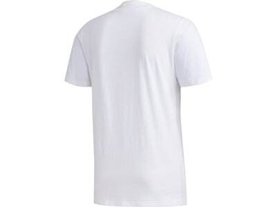 ADIDAS Herren Shirt CAMO BOX T Pink