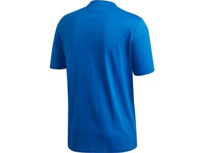ADIDAS Herren Shirt E PLN Blau